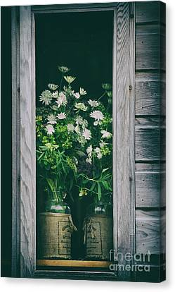 The Shed Canvas Print by Tim Gainey