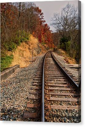Canvas Print featuring the photograph The Tracks In The Fall by Mark Dodd