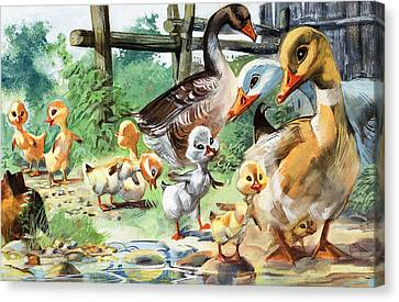Ducklings Canvas Print - The Ugly Duckling by English School