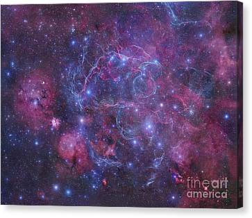 The Vela Supernova Remnant Canvas Print by Robert Gendler
