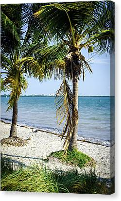 Flowers Miami Canvas Print - The Waters Edge by Camille Lopez