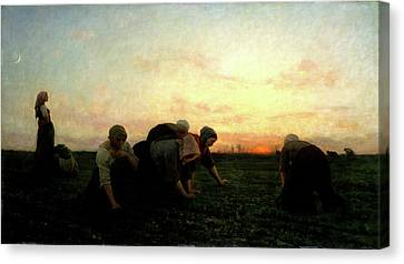 The Weeders Canvas Print by Jules Breton