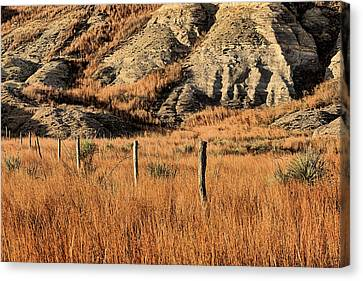 Canvas Print featuring the photograph This Is Kansas by JC Findley