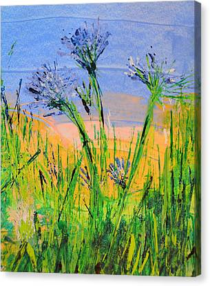Thistles One Canvas Print