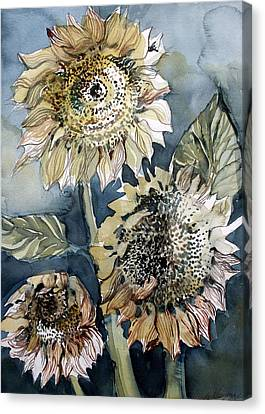 Three Sunflowers Canvas Print by Mindy Newman