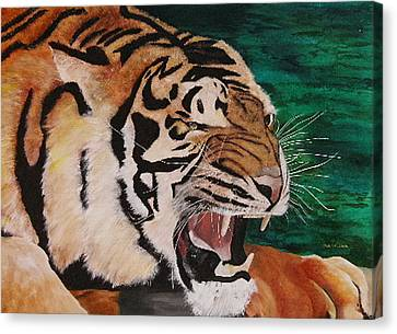 Tiger Paw Canvas Print by Shahid Muqaddim