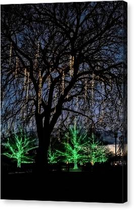 Canvas Print featuring the photograph 'tis The Season by Eduard Moldoveanu