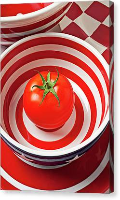 Tomato In Red And White Bowl Canvas Print by Garry Gay