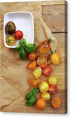 Tomato Still Life 5 Canvas Print