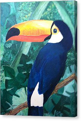 Tony The Toucan Canvas Print