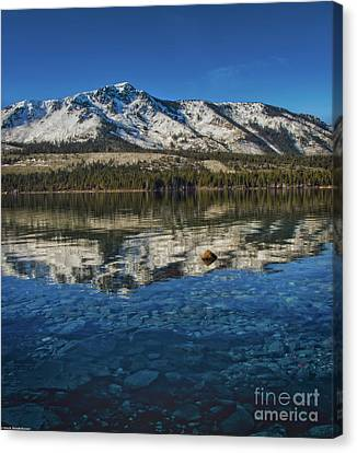Fallen Leaf On Water Canvas Print - Top To Bottom by Mitch Shindelbower
