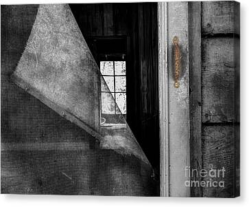 Abandoned House Canvas Print - Torn by Michael Eingle