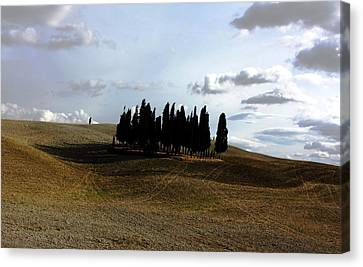 Canvas Print featuring the photograph Toscana by Pat Purdy
