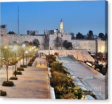 Tower Of David Canvas Print by Noam Armonn