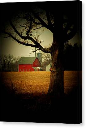 Tree And Barn Canvas Print by Michael L Kimble