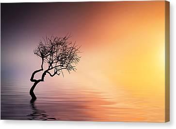 Tree At Lake Canvas Print by Bess Hamiti