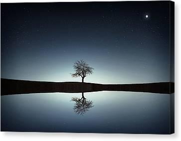 Tree Near Lake At Night Canvas Print by Bess Hamiti