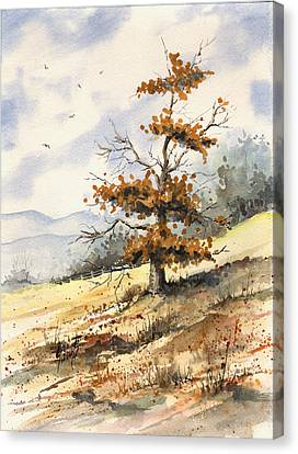 Tree On A Hillside Canvas Print by Sam Sidders
