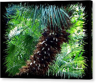 Canvas Print - Tropical Ambience by Will Borden