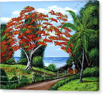 Tropical Landscape Canvas Print by Luis F Rodriguez