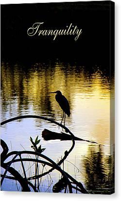 Tropical Bird Postcards Canvas Print - Tropical Tranquility by Olivia Novak