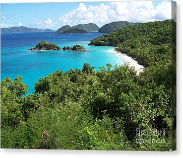 Canvas Print featuring the photograph Trunk Bay by Carol  Bradley