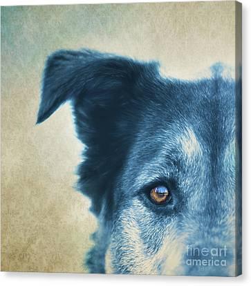 Trust Canvas Print by Priska Wettstein