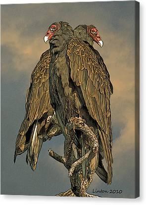 Vulture Canvas Print - Turkey Vulture Pair by Larry Linton