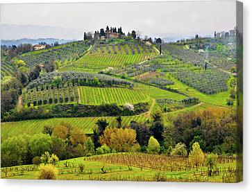 Tuscany Landscape Canvas Print by Dutourdumonde Photography