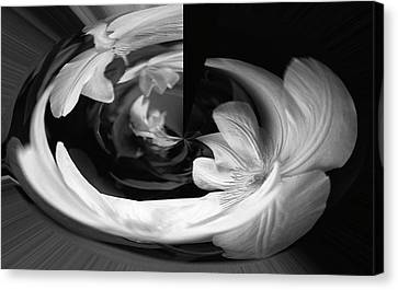 Canvas Print featuring the photograph Twisted by Wanda Brandon