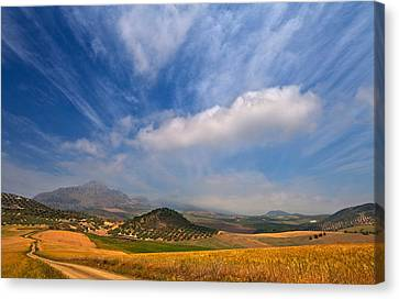Twisty Road, Near Casabermeja, Malaga Canvas Print by Panoramic Images