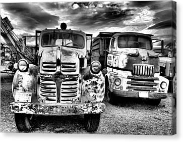 Canvas Print featuring the photograph Two Old Beauties by Jeff Swan