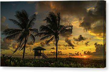 Two Palm Sunrise Delray Beach Florida Canvas Print