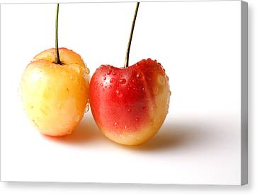 Two Rainier Cherries Canvas Print by Blink Images