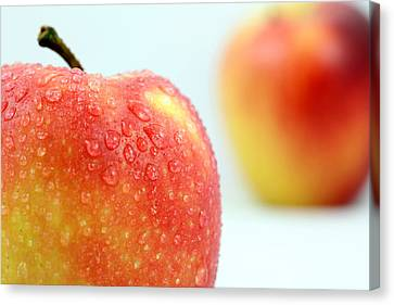 Sour Canvas Print - Two Red Gala Apples by Paul Ge