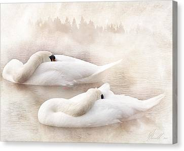 Two Swans Canvas Print by Svetlana Sewell