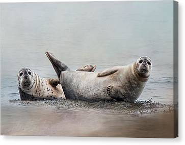 Canvas Print featuring the photograph Two's Company by Robin-Lee Vieira