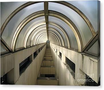 Underground Vault Canvas Print by Yali Shi