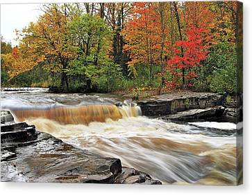 Unnamed Falls Canvas Print by Michael Peychich
