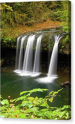 Upper Butte Creek Falls In Autumn Canvas Print by David Gn