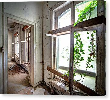 Urban Decay Nature Takes Over - Abandoned Building Canvas Print