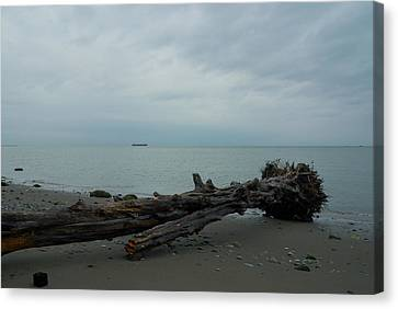 Canvas Print featuring the photograph Vancouver Tower Beach  by Steven Richman