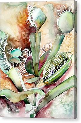 Venus Fly Trap Canvas Print by Mindy Newman