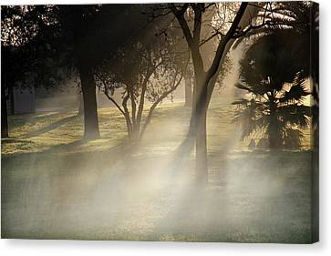 Victory Park In Fog Canvas Print