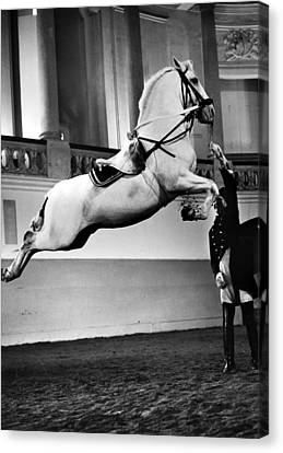 Vienna: Riding School Canvas Print by Granger