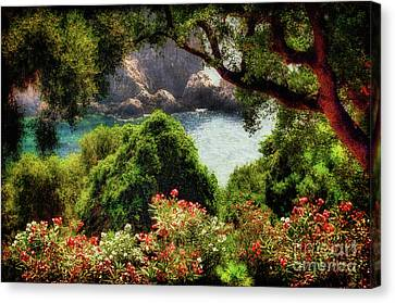 View From The Terrace - Paleokastritsa  Canvas Print by Lois Bryan