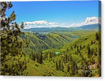 View From The Top Canvas Print by Robert Bales