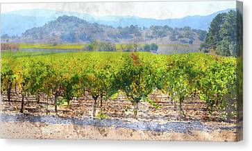 Vineyard In The Fall Canvas Print