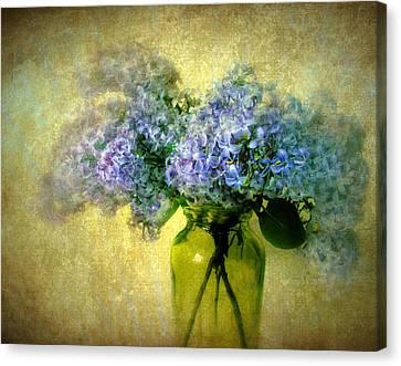 Vintage Lilac Canvas Print by Jessica Jenney