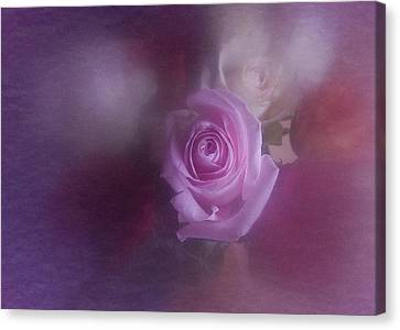 Canvas Print featuring the photograph Vintage Pink Rose Feb 2017 by Richard Cummings